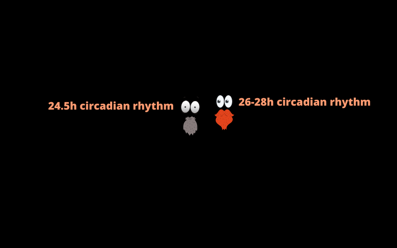 2-scientists-testing-circadian-rhythm-in-darkness