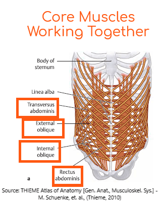 core-muscles-working-together